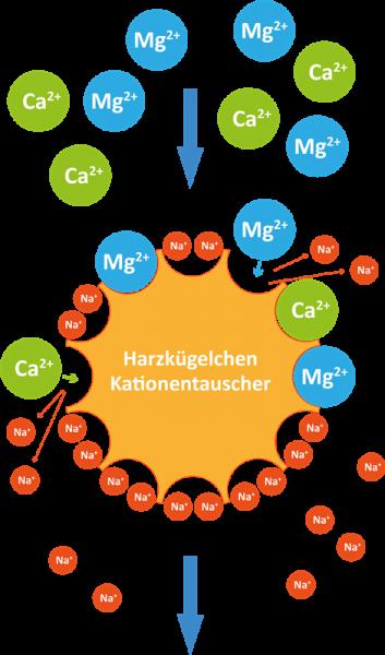 ionenaustausch-schema-funktion